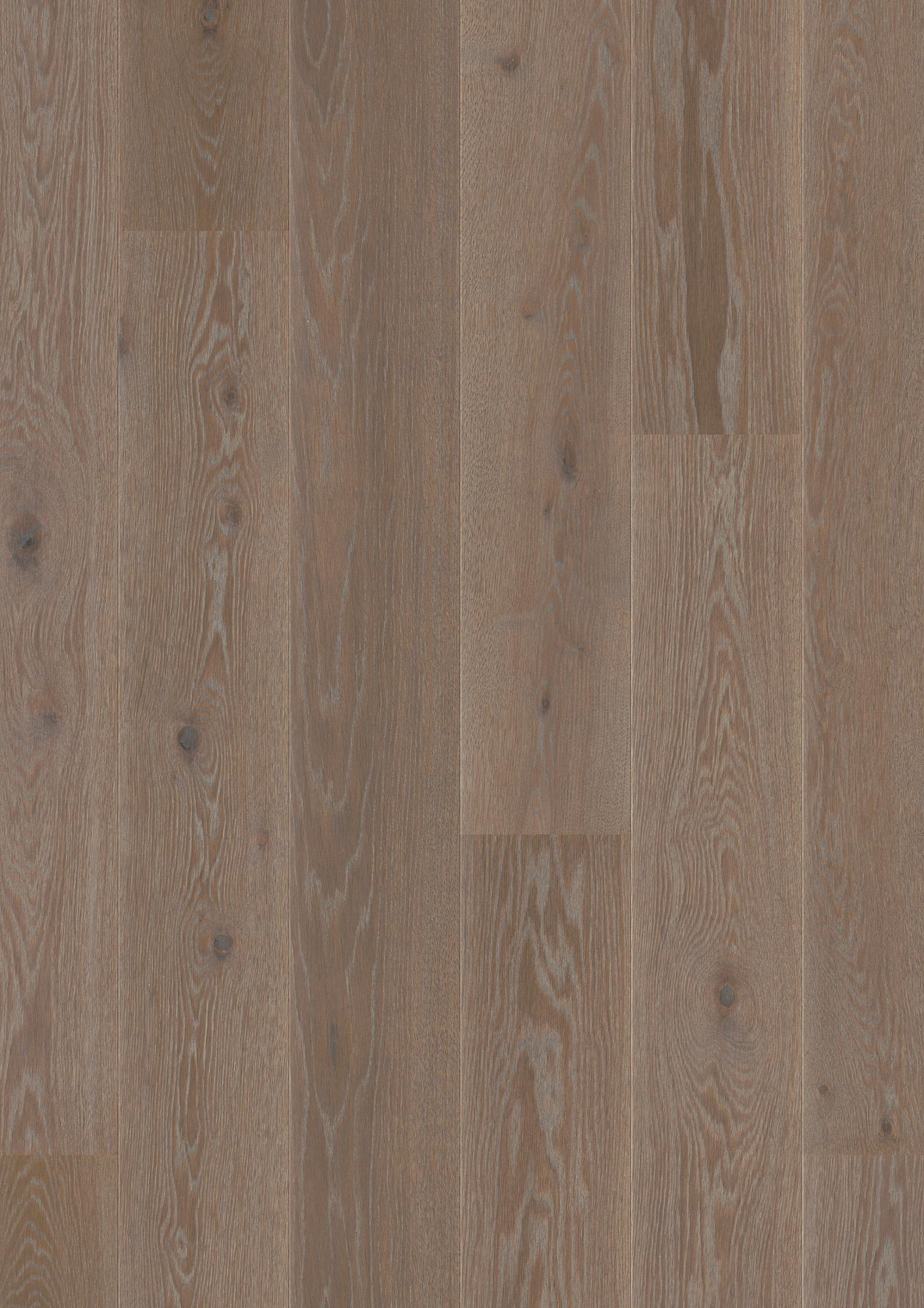 Oak India Grey, Live Pure lacquer, beveled 2V, brushed, Plank Castle, 14x209x2200mm